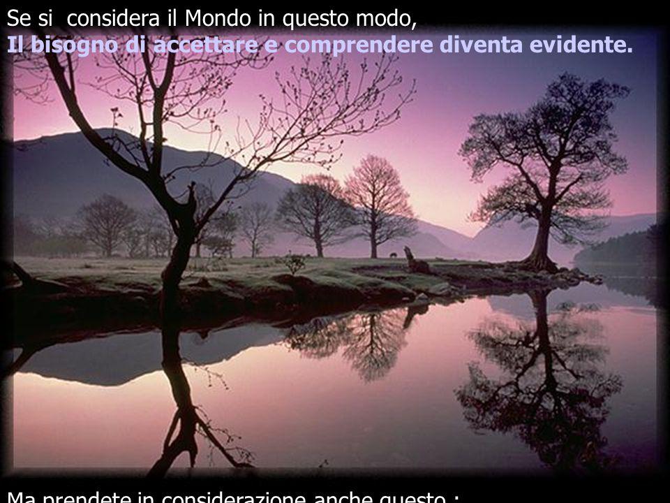 Se si considera il Mondo in questo modo, Il bisogno di accettare e comprendere diventa evidente.