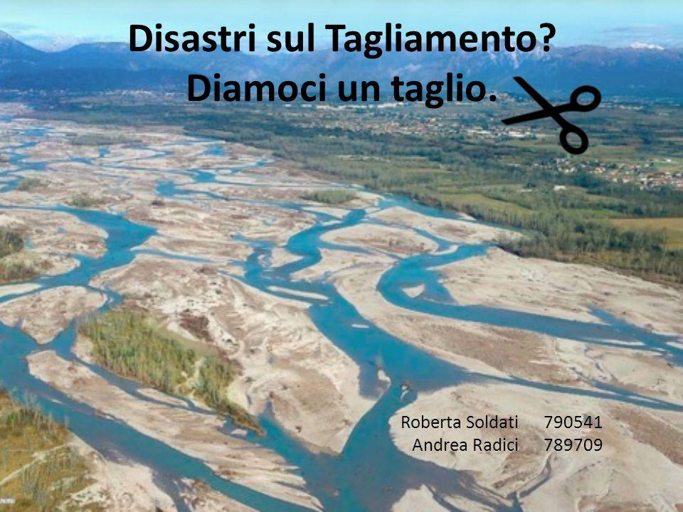Il Tagliamento Il fiume Tagliamento si trova in Friuli Venezia Giulia.