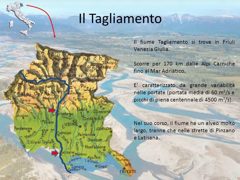 Il Tagliamento Il fiume Tagliamento si trova in Friuli Venezia Giulia. Scorre per 170 km dalle Alpi Carniche fino al Mar Adriatico. E' caratterizzato