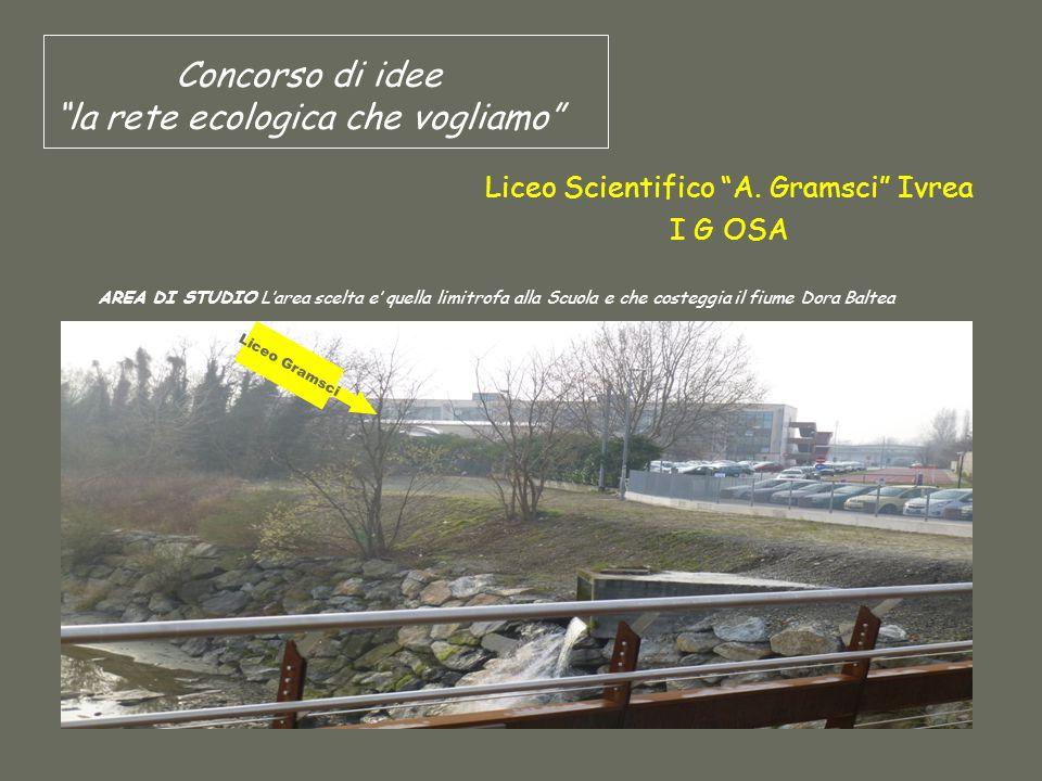 """Concorso di idee """"la rete ecologica che vogliamo"""" Liceo Scientifico """"A. Gramsci"""" Ivrea I G OSA AREA DI STUDIO L'area scelta e' quella limitrofa alla S"""