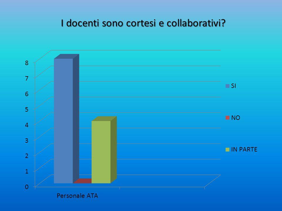 I docenti sono cortesi e collaborativi?