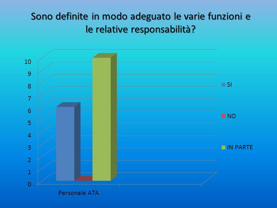 Sono definite in modo adeguato le varie funzioni e le relative responsabilità?
