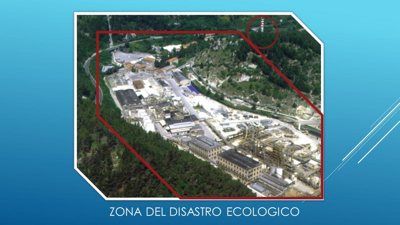 ZONA DEL DISASTRO ECOLOGICO