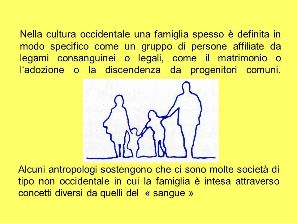 Nella cultura occidentale una famiglia spesso è definita in modo specifico come un gruppo di persone affiliate da legami consanguinei o legali, come i