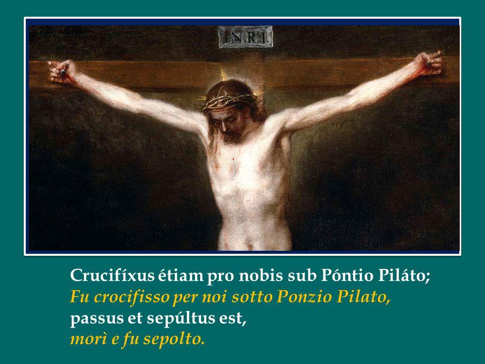 Crucifíxus étiam pro nobis sub Póntio Piláto; Fu crocifisso per noi sotto Ponzio Pilato, passus et sepúltus est, morì e fu sepolto.