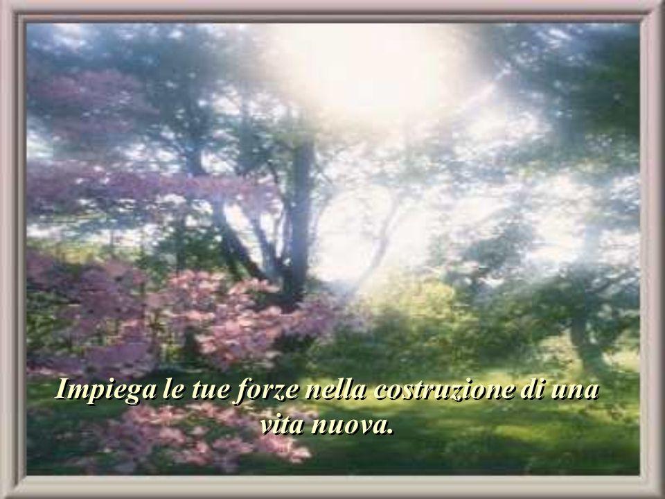 Non ravvivare i dolori e le sofferenze antiche. Quel che è passato... è passato.
