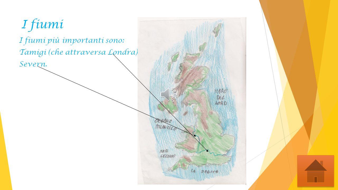 Fine di Michelangelo.S