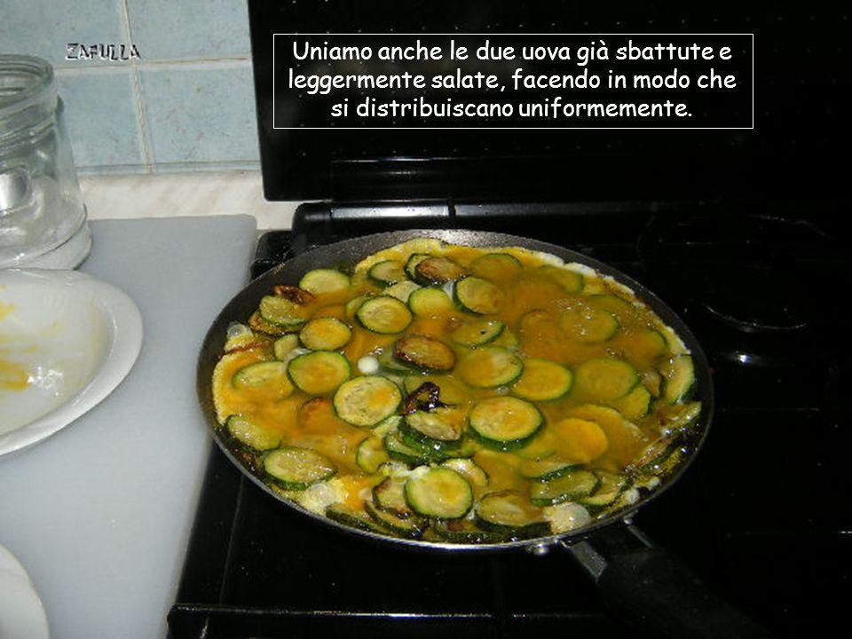 Mettiamo un po' d'olio nella padella e vi friggiamo la cipolla tagliata a rondelle; lasciamo colorire la cipolla; aggiungiamo le 2 zucchine tagliate a rondelle; saliamo leggermente e facciamo cuocere, girando spesso.
