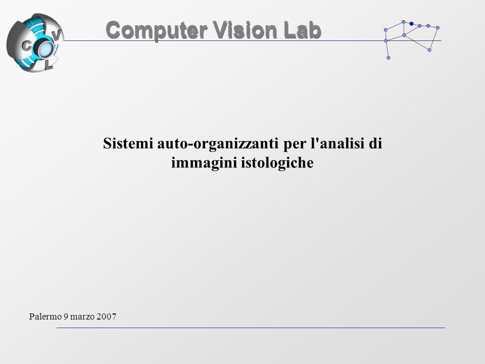 Sistemi auto-organizzanti per l analisi di immagini istologiche Computer Vision Lab Palermo 9 marzo 2007