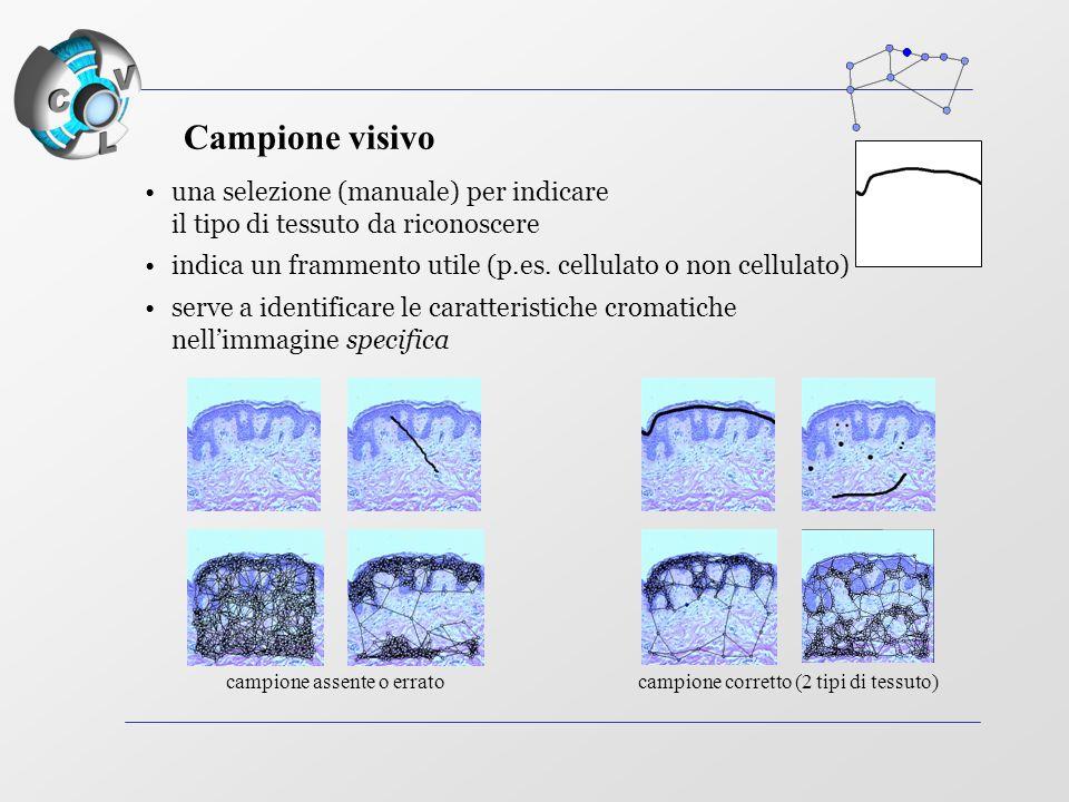 una selezione (manuale) per indicare il tipo di tessuto da riconoscere indica un frammento utile (p.es.