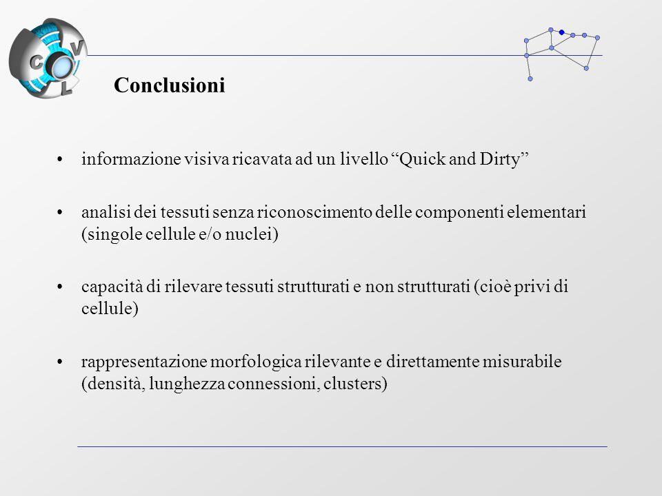 Conclusioni informazione visiva ricavata ad un livello Quick and Dirty analisi dei tessuti senza riconoscimento delle componenti elementari (singole cellule e/o nuclei) capacità di rilevare tessuti strutturati e non strutturati (cioè privi di cellule) rappresentazione morfologica rilevante e direttamente misurabile (densità, lunghezza connessioni, clusters)