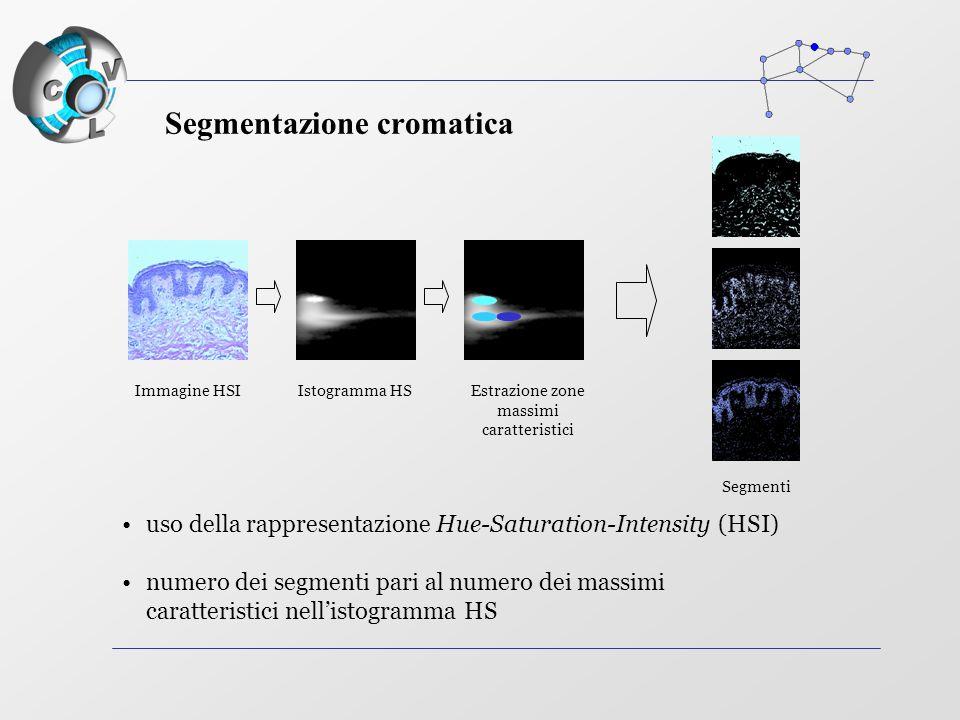 Immagine HSIIstogramma HS Segmenti uso della rappresentazione Hue-Saturation-Intensity (HSI) numero dei segmenti pari al numero dei massimi caratteristici nell'istogramma HS Estrazione zone massimi caratteristici Segmentazione cromatica