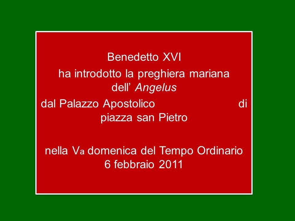Benedetto XVI ha introdotto la preghiera mariana dell' Angelus dal Palazzo Apostolico di piazza san Pietro nella V a domenica del Tempo Ordinario 6 febbraio 2011 Benedetto XVI ha introdotto la preghiera mariana dell' Angelus dal Palazzo Apostolico di piazza san Pietro nella V a domenica del Tempo Ordinario 6 febbraio 2011