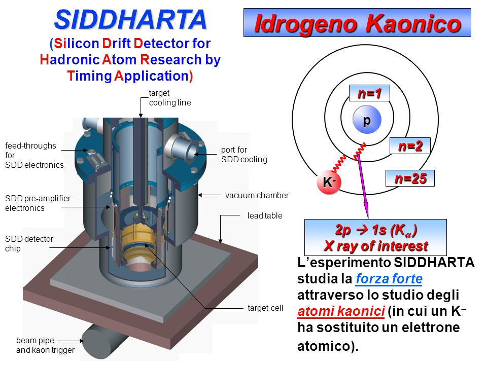 Dalle collisioni tra elettroni e positroni puo' essere prodotto il mesone Φ, che decade immediatamente in altre due particelle, i Kaoni K. I due K pos
