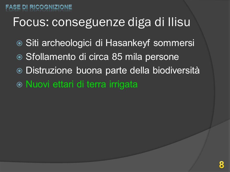 Focus: conseguenze diga di Ilisu  Siti archeologici di Hasankeyf sommersi  Sfollamento di circa 85 mila persone  Distruzione buona parte della biod