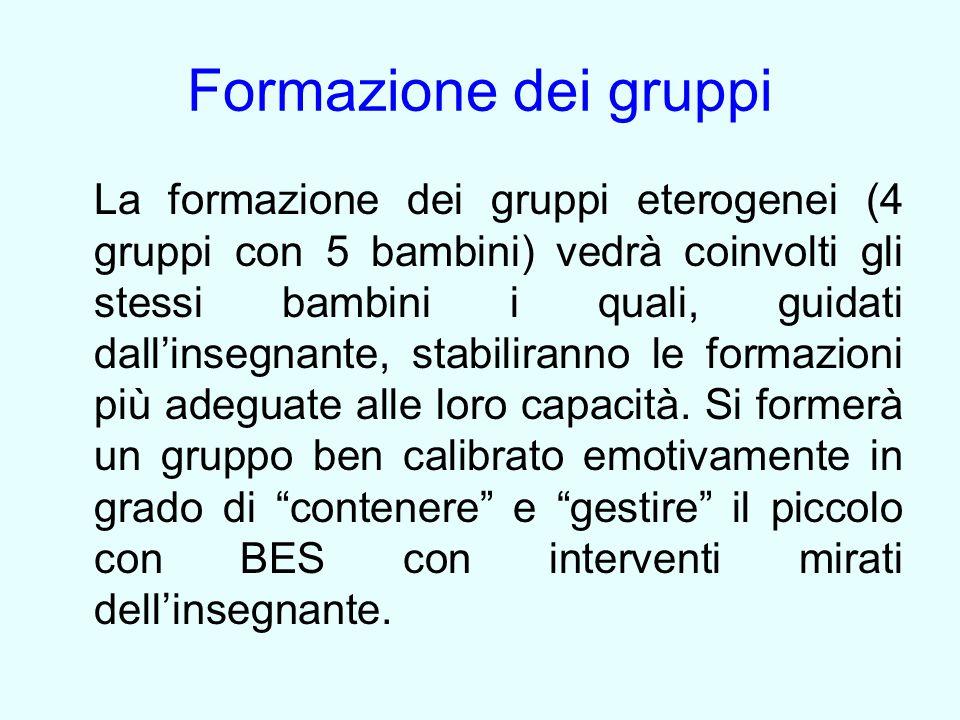 Formazione dei gruppi La formazione dei gruppi eterogenei (4 gruppi con 5 bambini) vedrà coinvolti gli stessi bambini i quali, guidati dall'insegnante