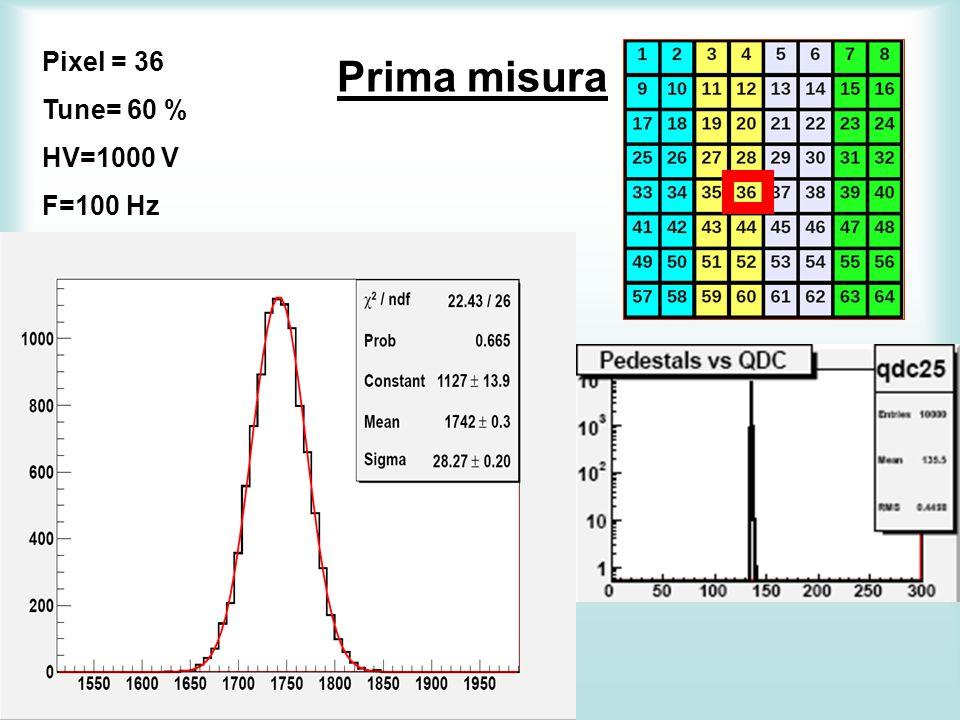 Prima misura Pixel = 36 Tune= 60 % HV=1000 V F=100 Hz
