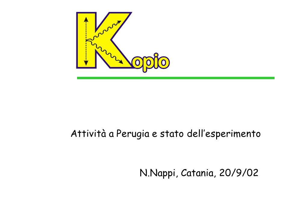Attività a Perugia e stato dell'esperimento N.Nappi, Catania, 20/9/02