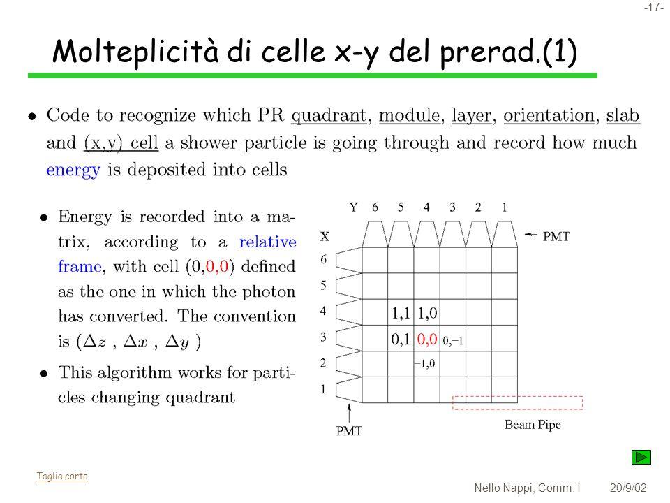 -17- Nello Nappi, Comm. I20/9/02 Molteplicità di celle x-y del prerad.(1) Taglia corto