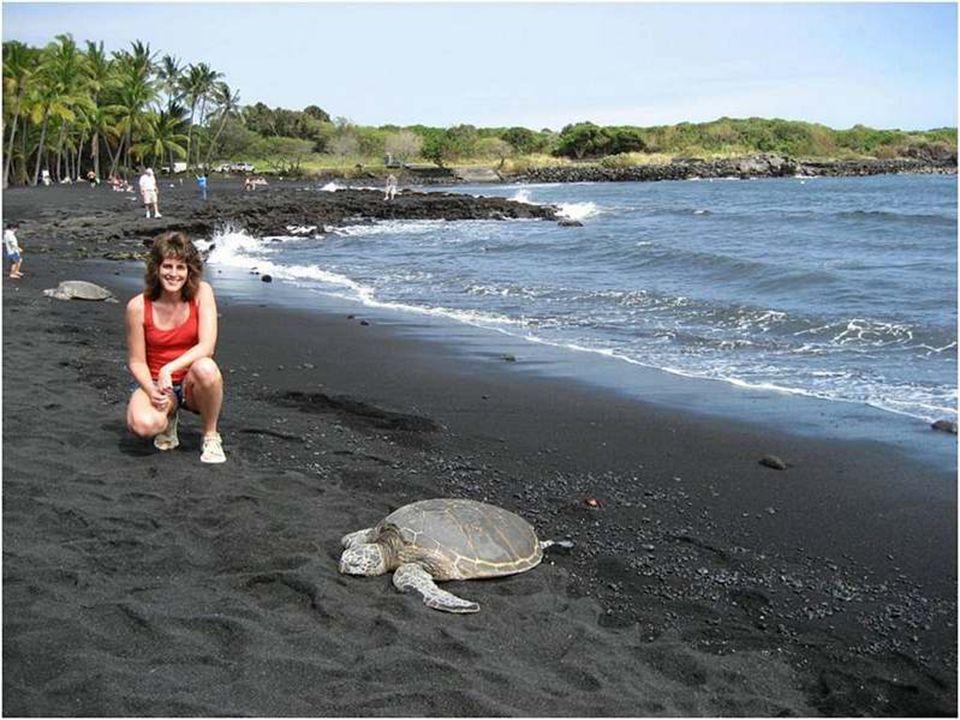 Punaluu è una spiaggia fra Pahala e Na Alehu nelle Hawaï.