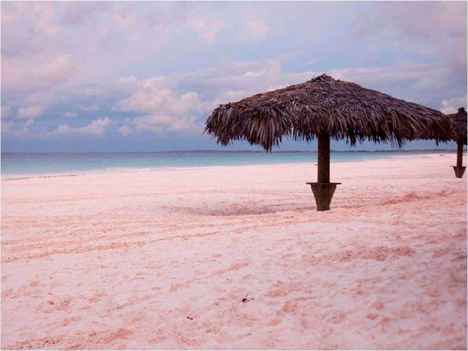 «Coral Pink Sand Beach» (spiaggia di sabbia rosa corallina) è una spiaggia fra palmeti e sabbia rosa dell'isola Harbour, alle Bahamas.