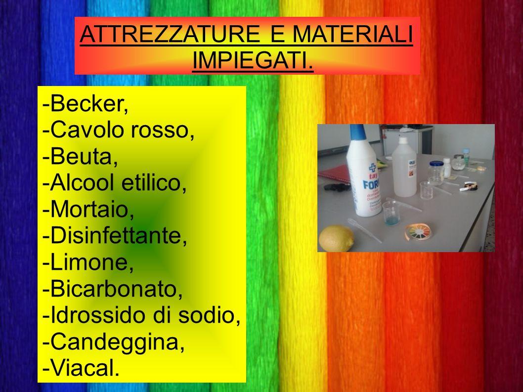 ATTREZZATURE E MATERIALI IMPIEGATI. -Becker, -Cavolo rosso, -Beuta, -Alcool etilico, -Mortaio, -Disinfettante, -Limone, -Bicarbonato, -Idrossido di so