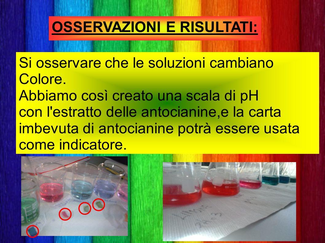 OSSERVAZIONI E RISULTATI: Si osservare che le soluzioni cambiano Colore. Abbiamo così creato una scala di pH con l'estratto delle antocianine,e la car