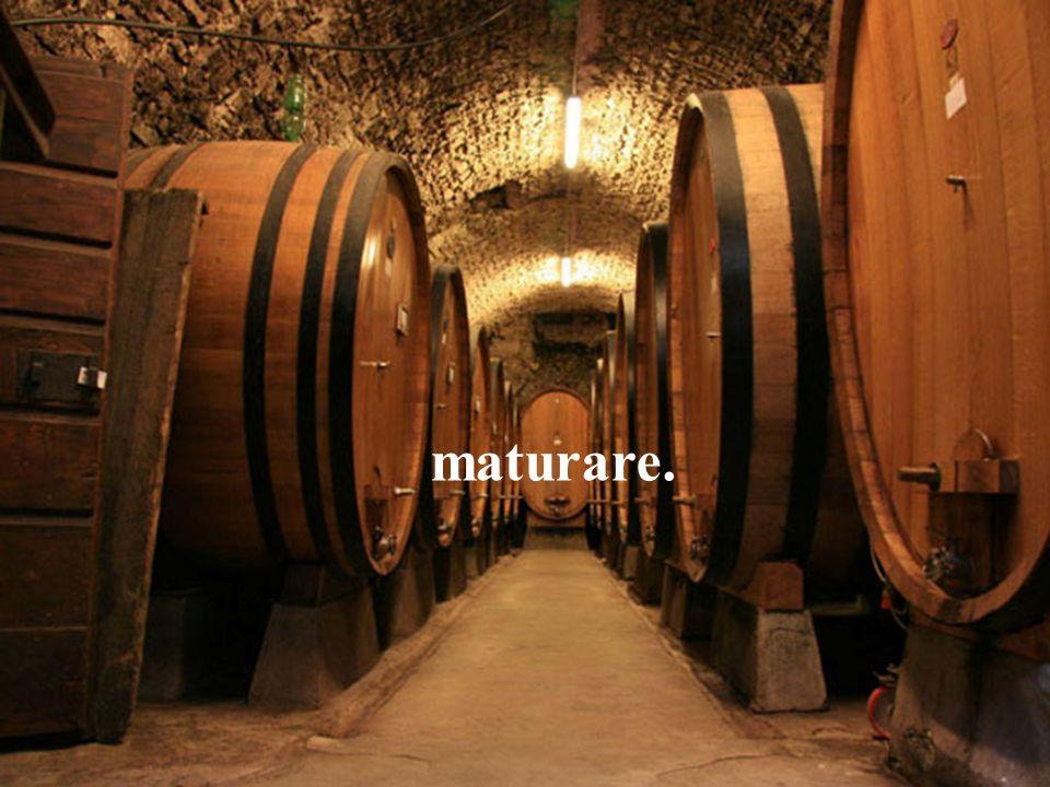 IL SECONDO VINO Penso spesso alle nozze di Cana. Il primo vino è bellissimo:.