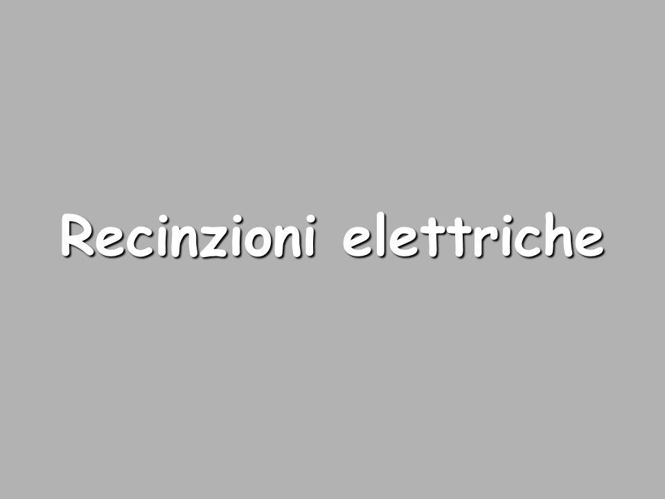 Recinzioni elettriche