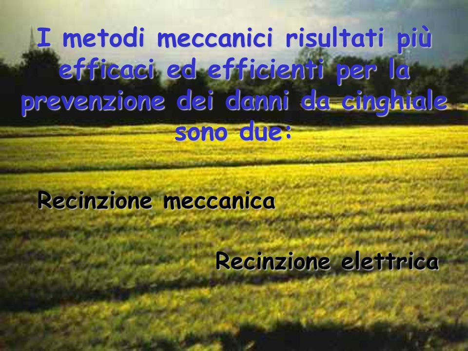 I metodi meccanici risultati più efficaci ed efficienti per la prevenzione dei danni da cinghiale sono due: Recinzione meccanica Recinzione elettrica
