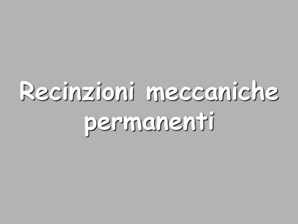 Recinzioni meccaniche permanenti