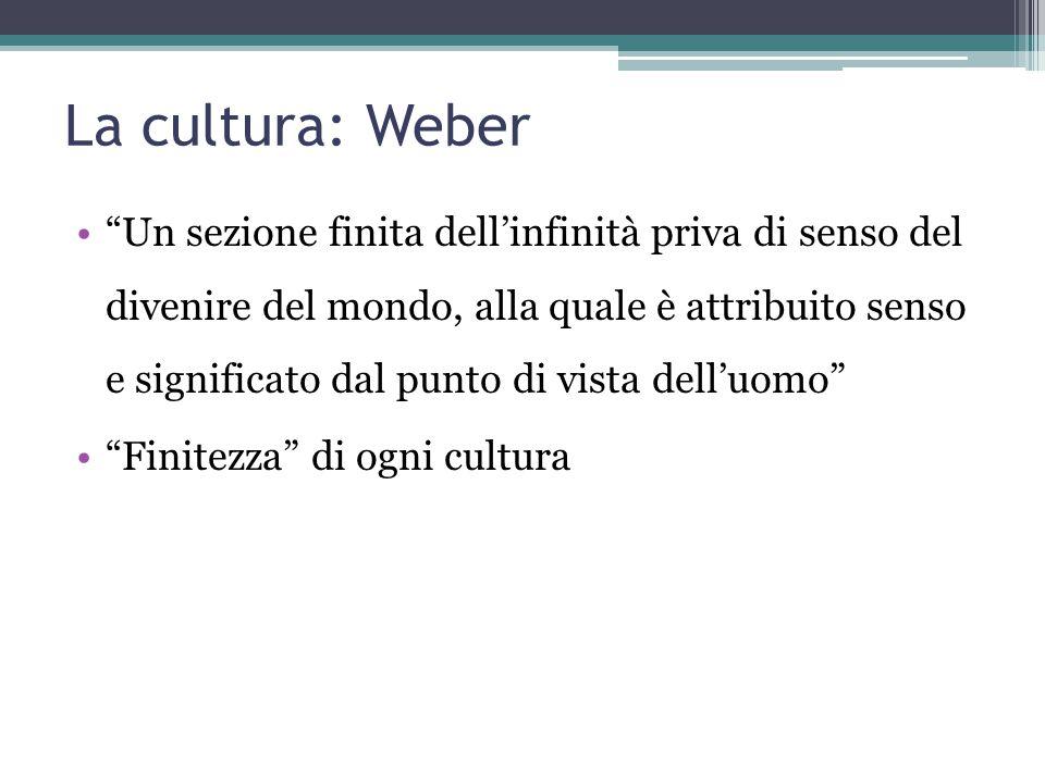 """La cultura: Weber """"Un sezione finita dell'infinità priva di senso del divenire del mondo, alla quale è attribuito senso e significato dal punto di vis"""