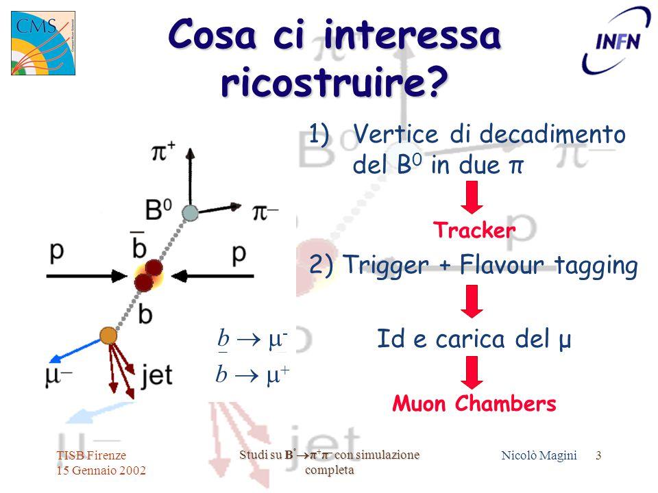 TISB Firenze 15 Gennaio 2002 Studi su B º  π + π – con simulazione completa Nicolò Magini 3 Cosa ci interessa ricostruire.