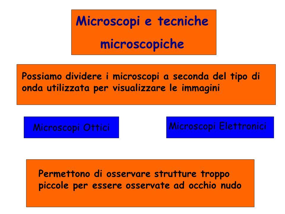 Microscopi e tecniche microscopiche Possiamo dividere i microscopi a seconda del tipo di onda utilizzata per visualizzare le immagini Microscopi Ottic
