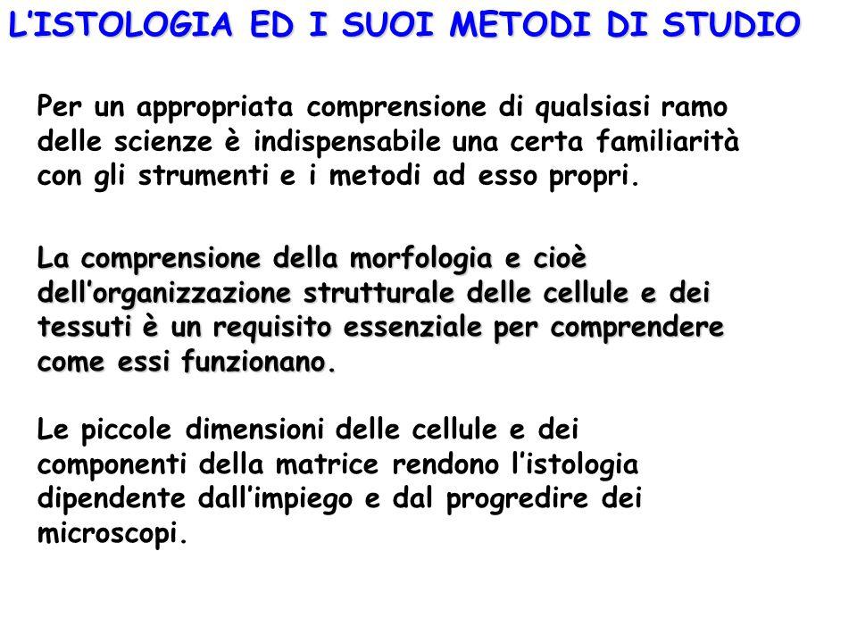 L'ISTOLOGIA ED I SUOI METODI DI STUDIO La comprensione della morfologia e cioè dell'organizzazione strutturale delle cellule e dei tessuti è un requis