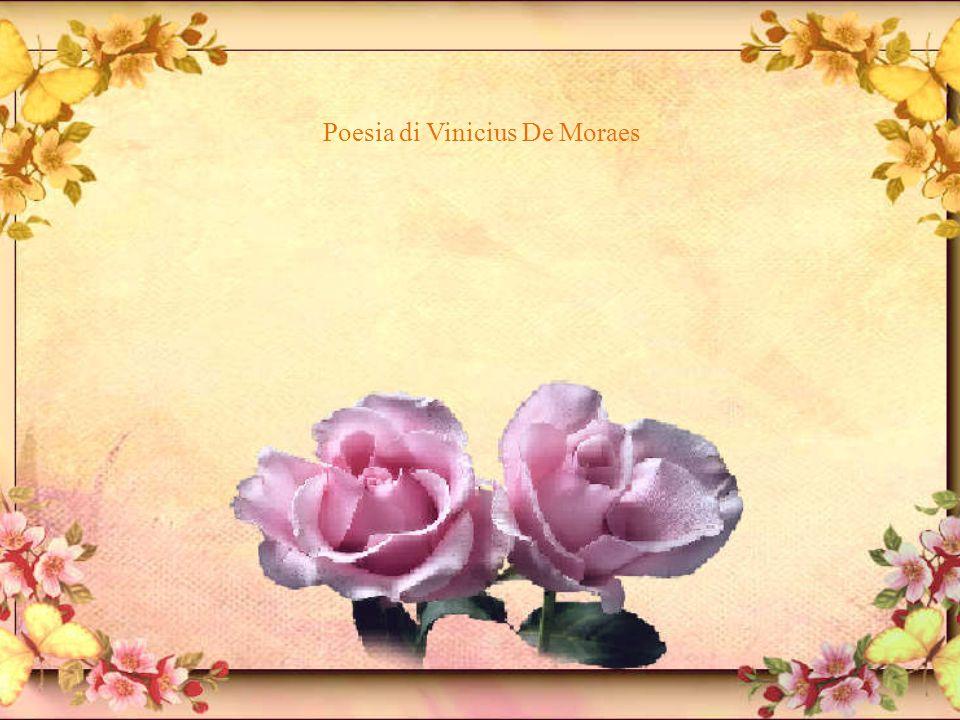 Sonetto della rosa tardiva