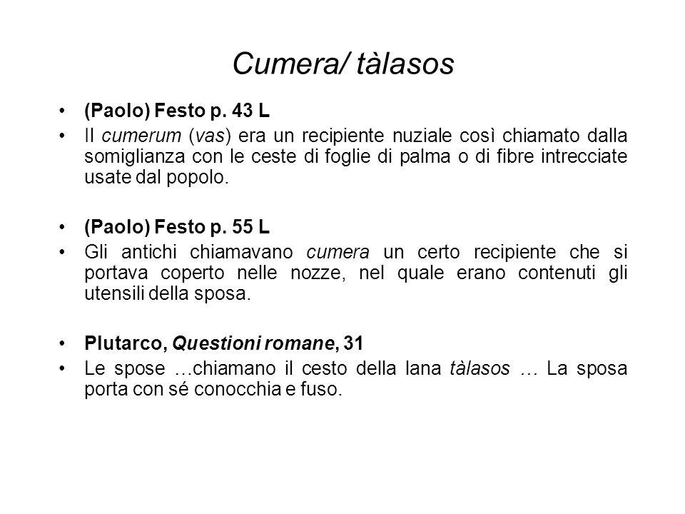Cumera/ tàlasos (Paolo) Festo p. 43 L Il cumerum (vas) era un recipiente nuziale così chiamato dalla somiglianza con le ceste di foglie di palma o di