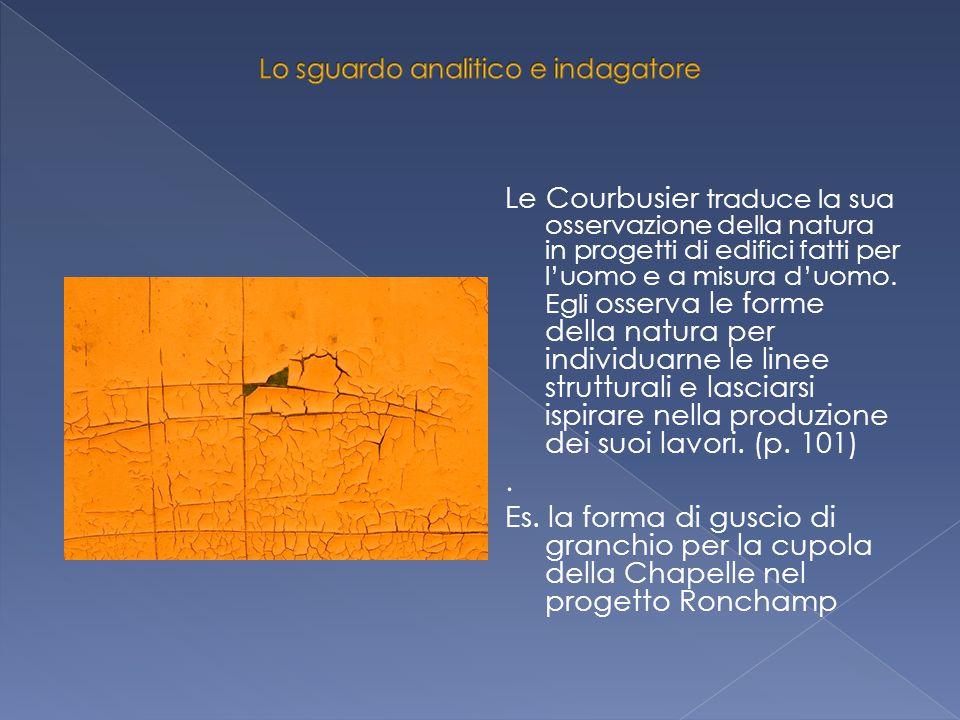 Le Courbusier traduce la sua osservazione della natura in progetti di edifici fatti per l'uomo e a misura d'uomo. Egli osserva le forme della natura p