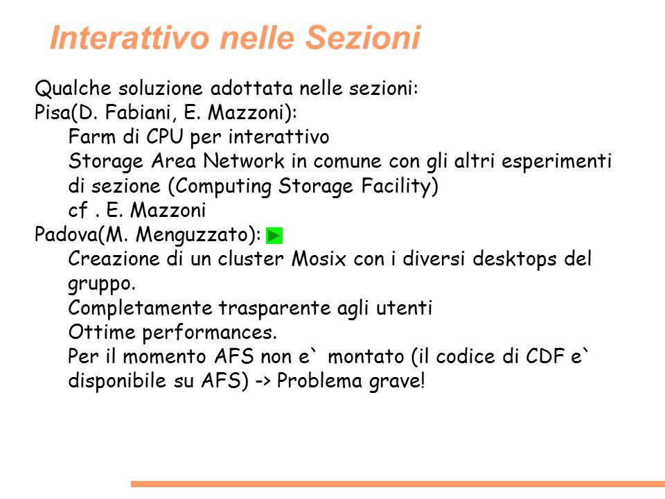 Interattivo nelle Sezioni Qualche soluzione adottata nelle sezioni: Pisa(D. Fabiani, E. Mazzoni): Farm di CPU per interattivo Storage Area Network in