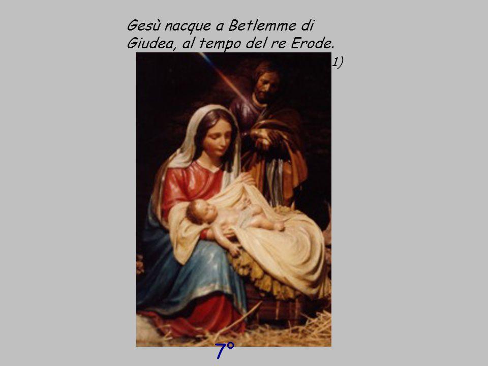 Gesù nacque a Betlemme di Giudea, al tempo del re Erode. ( cf Mt 1, 1) 7° giorno