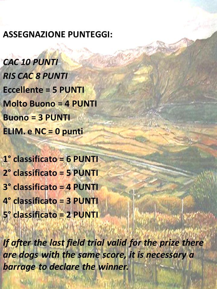 ASSEGNAZIONE PUNTEGGI: CAC 10 PUNTI RIS CAC 8 PUNTI Eccellente = 5 PUNTI Molto Buono = 4 PUNTI Buono = 3 PUNTI ELIM.