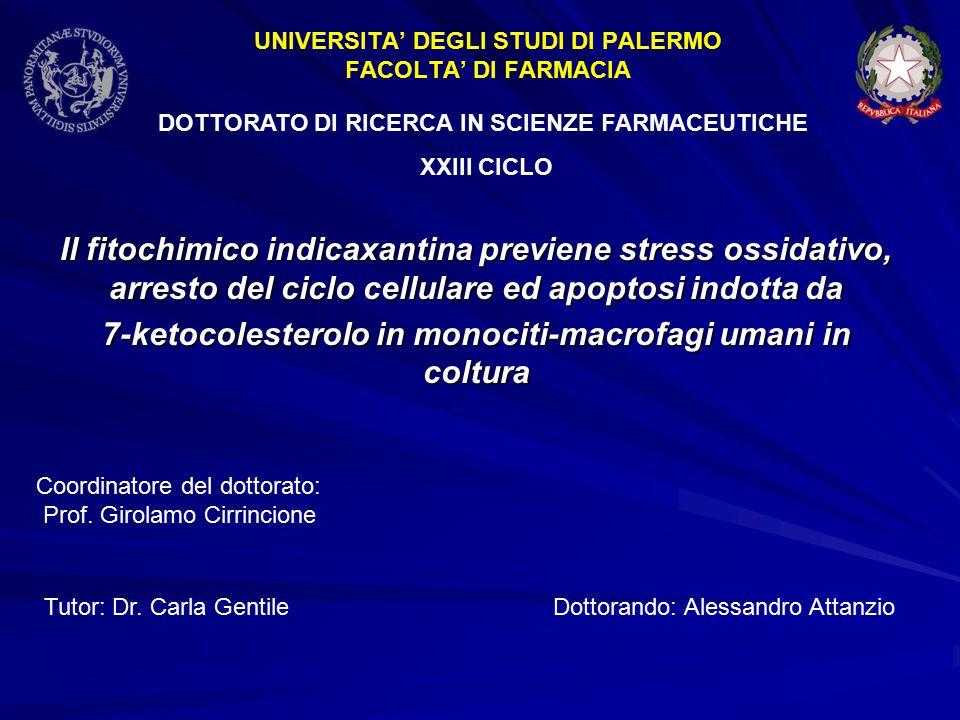 Il fitochimico indicaxantina previene stress ossidativo, arresto del ciclo cellulare ed apoptosi indotta da 7-ketocolesterolo in monociti-macrofagi umani in coltura Coordinatore del dottorato: Prof.