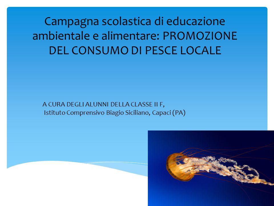 Campagna scolastica di educazione ambientale e alimentare: PROMOZIONE DEL CONSUMO DI PESCE LOCALE A CURA DEGLI ALUNNI DELLA CLASSE II F, Istituto Comp