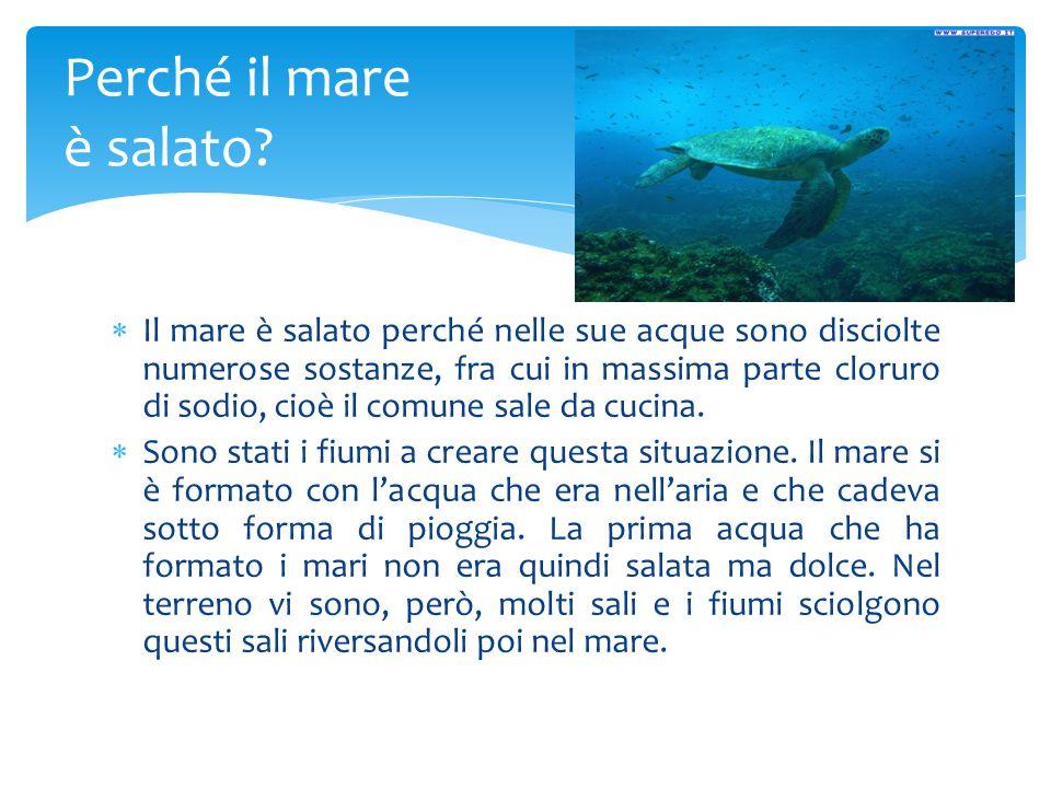 Perché il mare è salato?  Il mare è salato perché nelle sue acque sono disciolte numerose sostanze, fra cui in massima parte cloruro di sodio, cioè i