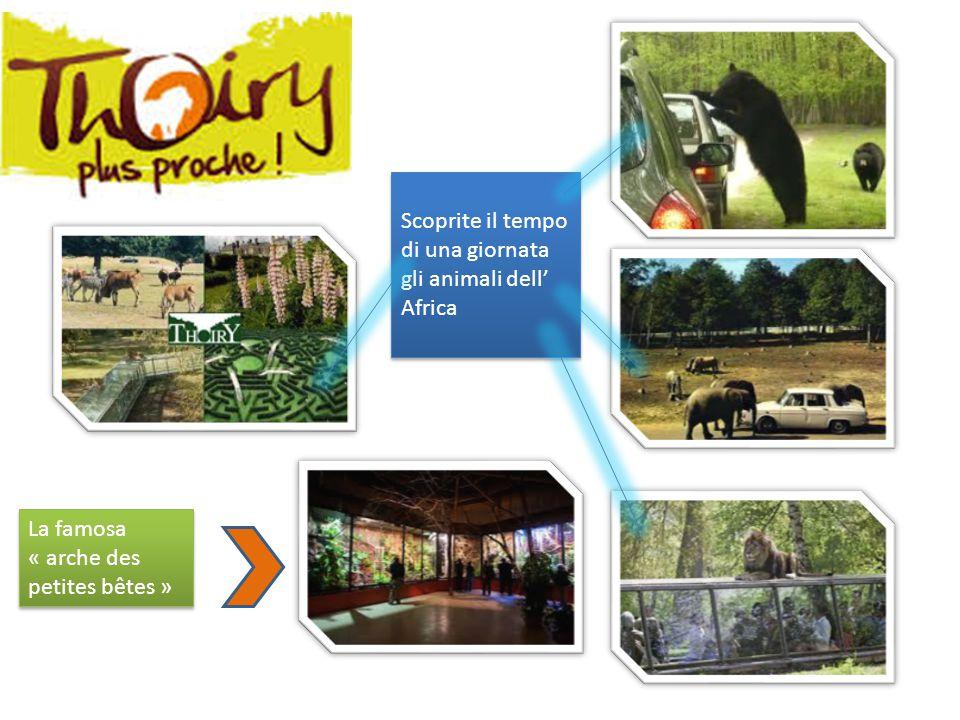 Scoprite il tempo di una giornata gli animali dell' Africa La famosa « arche des petites bêtes »
