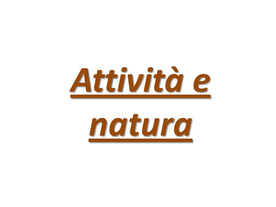 Attività e natura