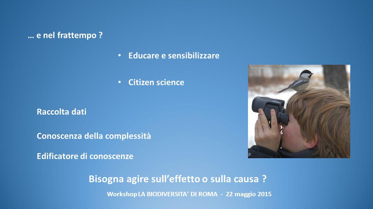 Workshop LA BIODIVERSITA DI ROMA - 22 maggio 2015 … e nel frattempo .