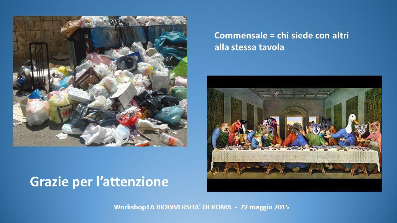 Workshop LA BIODIVERSITA DI ROMA - 22 maggio 2015 Commensale = chi siede con altri alla stessa tavola Grazie per l'attenzione