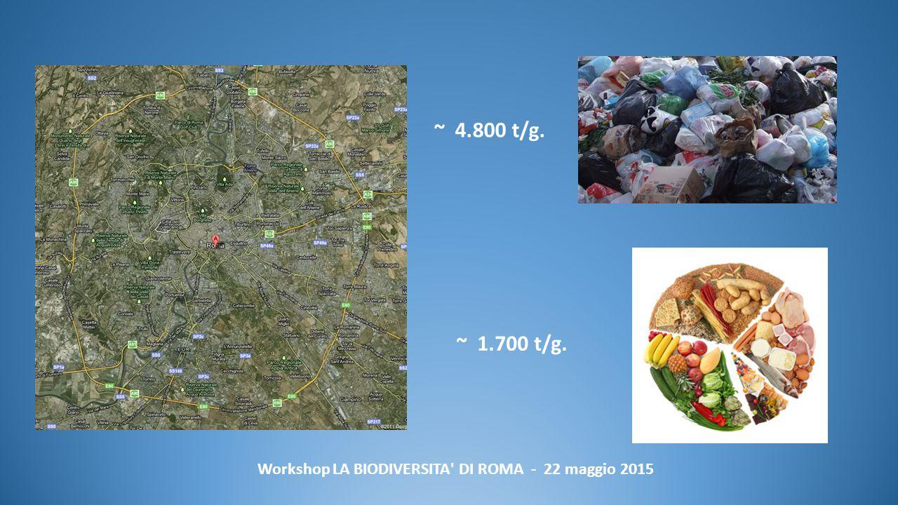 Workshop LA BIODIVERSITA DI ROMA - 22 maggio 2015 ~ 4.800 t/g. ~ 1.700 t/g.