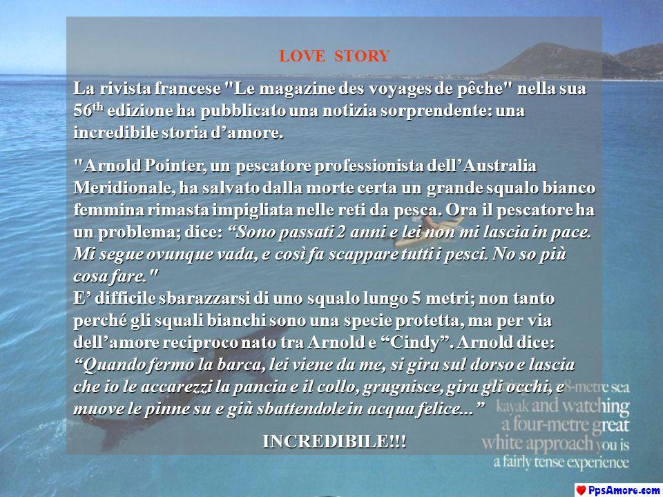 LOVE STORY La rivista francese Le magazine des voyages de pêche nella sua 56 th edizione ha pubblicato una notizia sorprendente: una incredibile storia d'amore.